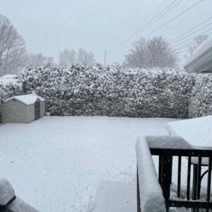 Our backyard during a snow storm in Northern, New York